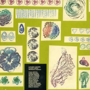 NicolaCarrino_catalogo-Didattica-2_1977__15